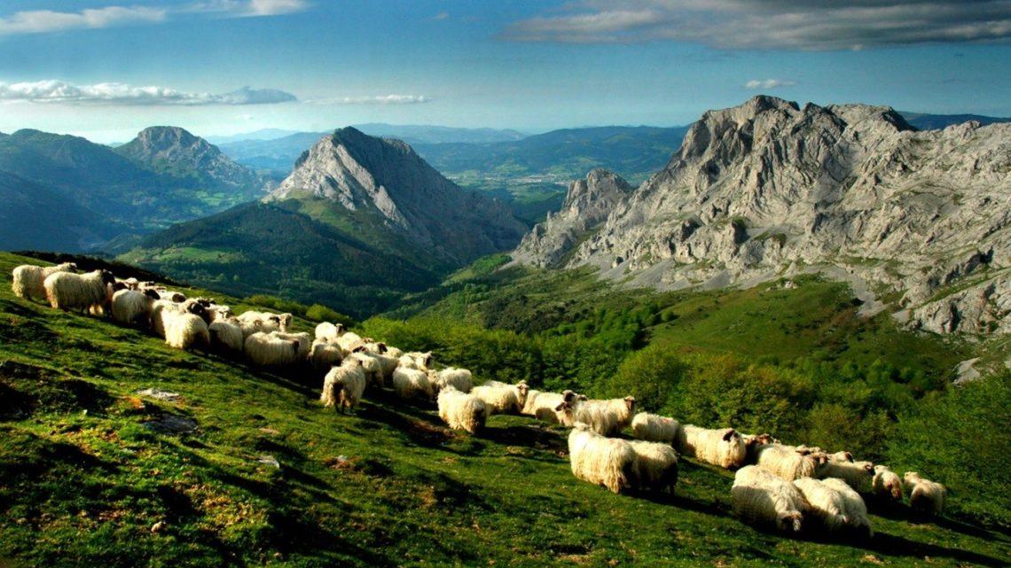 4 Razones por las que visitar Arratia-Nervión
